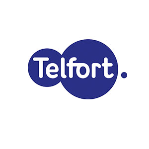 telfort_innovation_consulting_amsterdam_flywheelbusiness